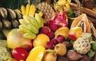 100 varietà di frutta esotica da 1,50€